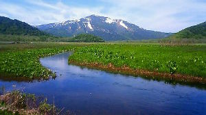 そうだ 山に登ろう 山を愛する一人として、この度の御嶽山の噴火で犠牲になられた 方々に心より哀悼の意を表します。  さて