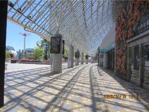 9681 - (株)東京ドーム この掲示板も、もう終わりかな? お世話になりました。  (写真は1年前、 天気の良い日の昼なのに誰も