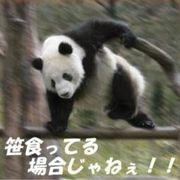 ( ̄(工) ̄)/プータローが行く