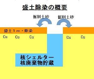 9501 - 東京電力ホールディングス(株) 日本政府の今後の復興対応  あと、10年もすれば、帰還より移住を選択する住民が多数派を占める  廃炉