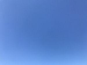 〓〓 不思議な出逢い 〓〓 おはよ(*^^*)  雲ひとつない青空♪ 気持ちいいね(*^^*)