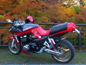 バイク仲間募集中! いいバイクですね~!   (*^^)v 来年に向けて 体力作りですか。。。? また 来年また どこか