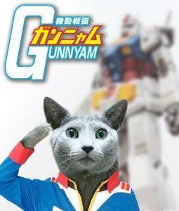 猫式ニャム にゃ! 銘柄追加しました。猫り言をありがとうございます。m(_ _)m