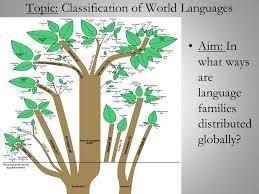 多言語学習 LANGUAGE CLASSIFICATIONS  Typological Classificati