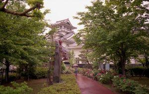 夢は旅地を駆け巡る 歌舞伎公園  http://gallery.nikon-image.com/146681635/al
