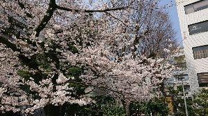 千葉県内~関東…一緒に走りましょう!!Ⅱ あ~~~、いい天気が続いてますね(´ω`*) 千代田区六番町、ほとんど四谷に