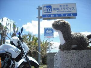 千葉県内~関東…一緒に走りましょう!!Ⅱ どもども☆G.W.以来、ツーリングは寒さとの戦いになっています^^; 今日も房総方面に繰り出したので