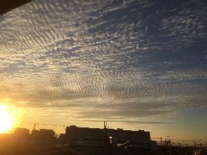 シニア/心の旅 おはようございます♪ 私としては珍しく、カメラ男子になった今朝の空でした。