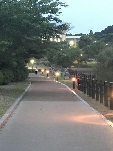 県外に住んでます。熊本の人と話したいです。 熊本のみなさん お疲れ様でした。 どんな一日でしたか?  気を紛らわせに、散歩に出かけました。 のん