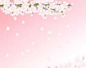 ほんの小さな幸せ こんにちは~お~さん^^  桜も少しずつ咲き出しましたね^^  桜の名所にはなかなか行けませんが