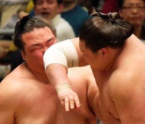 白鵬 エルボーはプロレスのジョニーバレンタイインwww 相撲取りがエルボーなんか使こたらあかんやろwwww