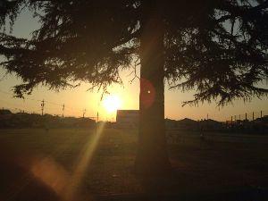 真夜中のナイト☆彡【ロマンティック・ポエム】  ゆっくりと…     沈む 夕日を   ふたり 肩よせ…