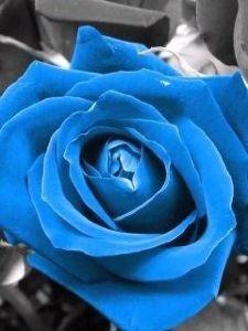 真夜中のナイト☆彡【ロマンティック・ポエム】  哀しい 時こそ …      笑顔で いようなぁ(哀笑)