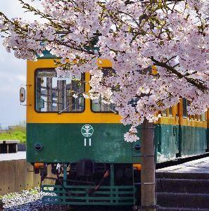 下手の横好き、一人きり 懐かしの新潟電鉄車両を絡めてみた センスが悪いのでイマイチ