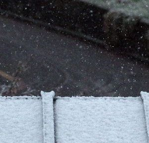 下手の横好き、一人きり 天気予報で雪が降るなんて これっぽっちも言ってなかったぞ 桜が満開だと言うのに なごり雪を見るとは思