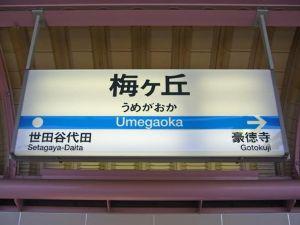 3350 - (株)レッド・プラネット・ジャパン 私は静岡大学です。