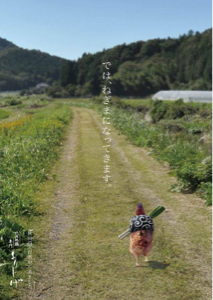 3350 - (株)レッド・プラネット・ジャパン 併合してから今日まで、毎日こんな気分 来週からは玉子付きで、釣られちゃうのかな?