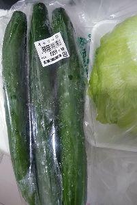 3038 - (株)神戸物産 今日はカルボナーラするわ(・ω・) タレは宮城製粉はんの レストラン仕様シリーズのやつな
