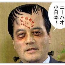 ↓ オウム犬のタマリ場 ↑ ◆民主党の政策は日本を解体し中国の属国(植民地)にすること。     ★沖縄に一国二制度の導入(中国