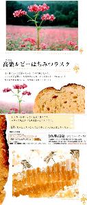 7885 - タカノ(株) パンフ