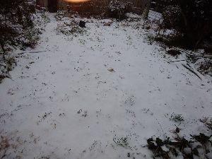 65歳以上の人はPCしないのかな。 皆様お早うございます 暑い時に涼しさを感じて 下さい。此方でも1月には このように雪が降りました で