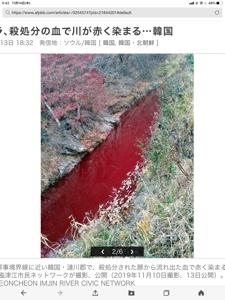 3938 - LINE(株) ネイバーの聖地!韓国の川! ちなみに私は買い方ですが、、、、