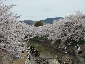 東男・京女 こんばんわ  今日も風がキツクて とても寒かったです 朝のうちは まだ寒さもマシなんですが お昼過ぎ