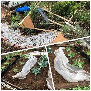 行ってきました、食べてきました、買ってみました 楽しみにしていた野菜くんたちも 作り始めた鶏小屋も ・・・ 全部台風24号が壊しちまった (T.T)
