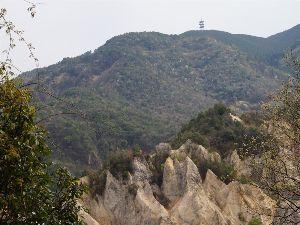 六甲山 土曜日の大平山、 棚越新道界隈のタムシバです。 もう遅いのか白さが目立ちません。