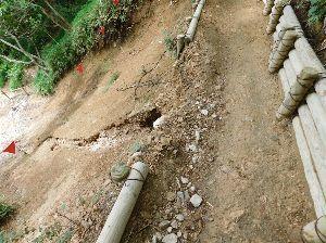 六甲山 魚屋道の迂回路部。 ちょっと浸食されていますが 道はまだ健在。