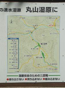 六甲山 kazu****さん、大岩ヶ岳経由で丸山湿原 報告有難うございます。 丸山湿原は道場から入るか武田尾