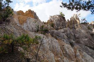 六甲山 4.マニア編  瑞宝寺谷ルートや十八丁尾根から有馬ルートなど  マニアのルートを歩きました。  添付