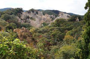 六甲山 現在の蓬萊峡の様子です。 少し色づいてきています。  ところでこの写真で気づきました。 岩肌部分にオ
