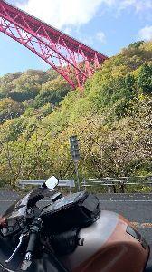 楽しいバイク♪ 昨日今日と紅葉がとても綺麗でした