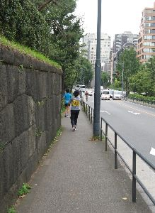 皇居で走るのは是非やめてもらいたい。 間違っています。歩行者優先です。 それから現地をご存じないようですね。片側1車線しかないところが1/