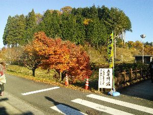 豊橋からツーリング仲間募集(^-^)/ めだかさん こんばんは、 先週は冷えましたけど、ここ最近は暖かくて 琵琶湖・京都へ良いに行かれました