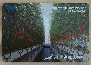 9380 - 東海運(株) 私もこのミニトマト食べたいな🍅