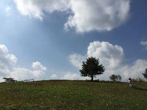 8789 - フィンテック グローバル(株) 沿線住民として、ありがとうございます^_^  三峰神社は良いですねえ⛩^_^  飯能の奥武蔵の山々も