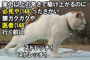8789 - フィンテック グローバル(株) 終値148円。 医者(148)は医師や(148)←当たり前