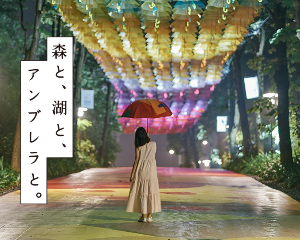 8789 - フィンテック グローバル(株) 正門入った広い通路の空が傘だらけって事? 綺麗だろうね!