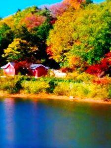 8789 - フィンテック グローバル(株) 秋の紅葉🍁イベント🎪盛りだくさん💞 メッツァビレッジのハーベスト(秋の収穫祭)🎶おもちゃのマルシェが