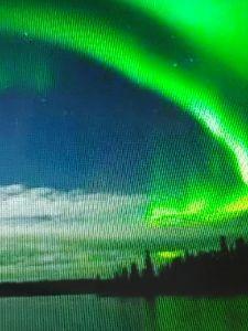 8789 - フィンテック グローバル(株) ムーミン・サンタ・オーロラの国!北欧フィンランドが開園1周年のムーミンタウンで再現🎅✌️  森と湖の
