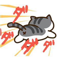 メロンの寝落ちソファー にゃあ~!(ФωФ)