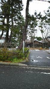 いつまでも☆と・き・め・き・を☆ ごめん 辛いこと思い出しちゃったかな  良い思い出 作って下さい  近くの伊藤博文の別荘