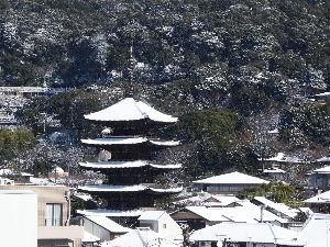 OLYMPUS OM SERIES (いつもの風景) 大雪 ! 今日の京都は日中、晴れたり、曇ったり、雪がちらついたりで 10Cmぐらい