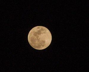 OLYMPUS OM SERIES (いつもの風景) お月さん 19時のお月さん 天気は ?? alto***** Oly-E300