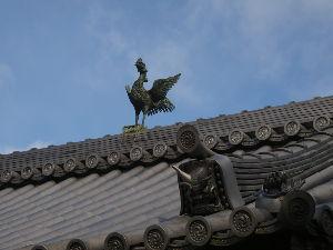 OLYMPUS OM SERIES (いつもの風景) 泉湧寺の入り口に那須の与一さんゆかりの 即成院があります、、近くに居ながら 御門の