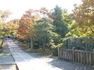 OLYMPUS OM SERIES (いつもの風景) 11/18 小雨の京都です。 画像は昨日の昼前の  三十三間堂 近くの 養源院 通
