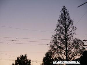 OLYMPUS OM SERIES (いつもの風景)11/16 朝ぼらけ 外気温 8度 空には明けの明星が輝いています。 天気予報は曇り