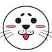 ニャム(`Δ´)ちゃん❕ 猫ちゃんこんにちは。年の瀬だよ。最後くらいはアザラシ君で投稿するよ(笑) 本年は世話になったか知らん